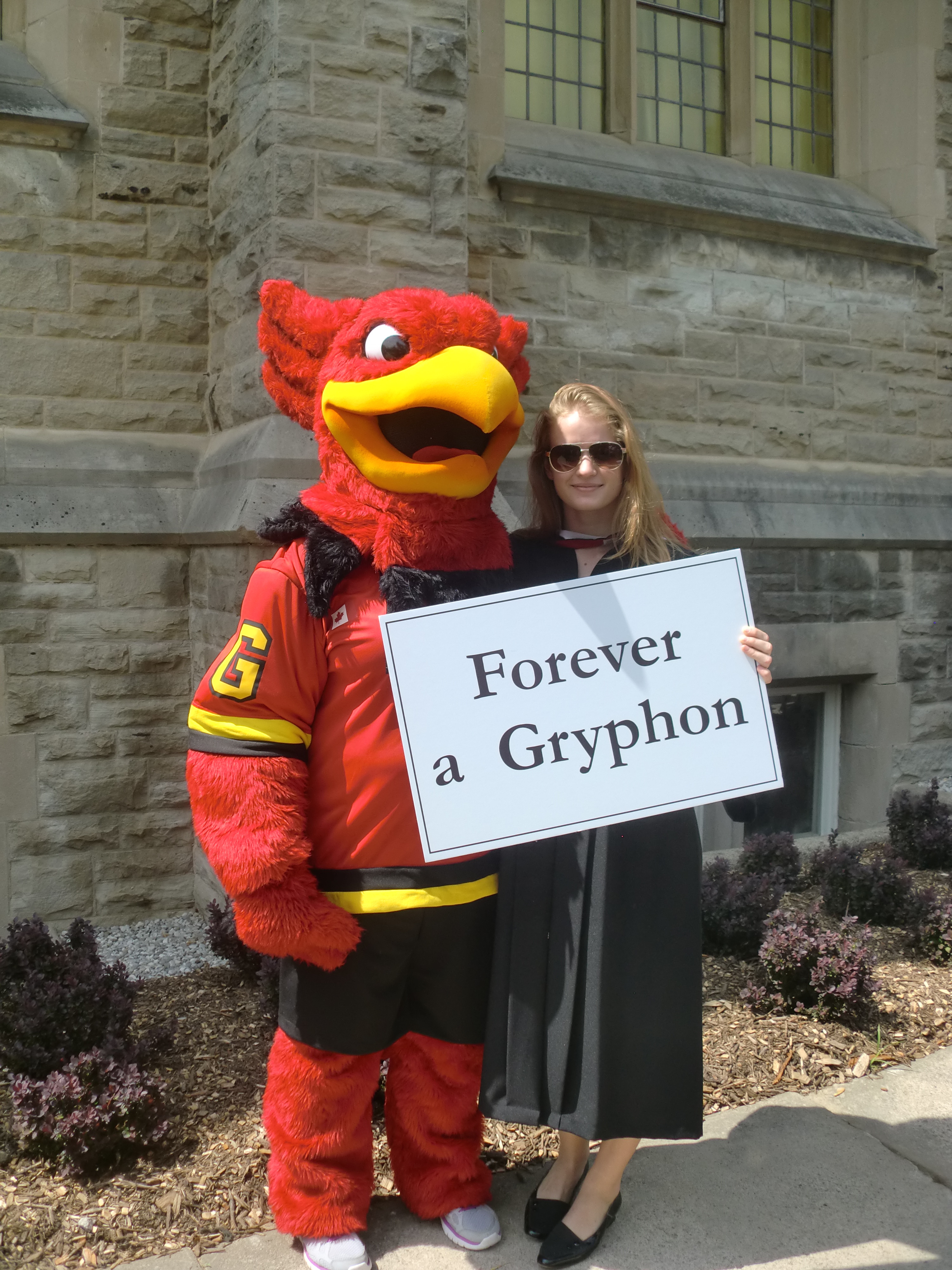 Guelph Gryphon