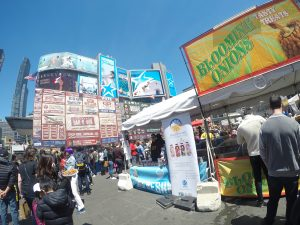 Ribfest - Keep the Travel bug Alive, reverse culture shcok