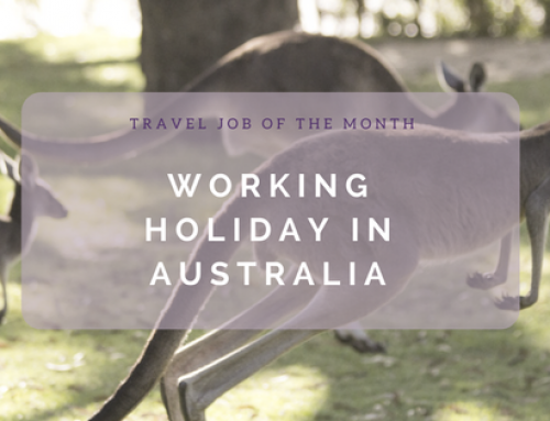 Travel Job of the Month: A Working Holiday in Australia